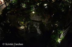 Disney's Polynesian Resort, #examinercom, Walt Disney World, Disney Dining, Capt. Cook's, old waterfall feature replaced in 2014