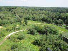 Zicht op de Lieteberg te Zutendaal, een van de toegangspoorten tot het Nationaal Park Hoge Kempen.