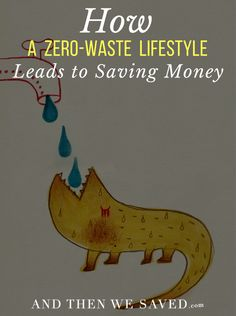 Interested in trying a zero-waste lifestyle? Here are some budget-friendly options to get you started ...