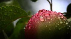 18 bis 22 Grad: Regen überzieht am Sonntag fast ganz Deutschland