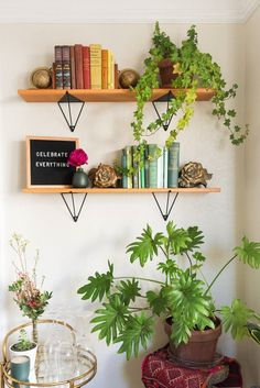 floating shelves in a plant-filled bohemian apartment inspiration