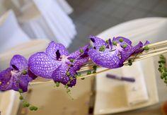 Travail de l'orchidée Actuel Flors Torcy http://www.actuelflors.com/