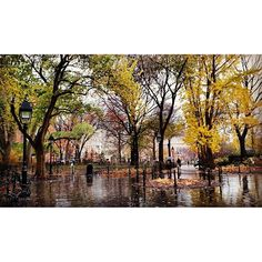 http://washingtonsquareparkerz.com/washingtonsquarepark-nyc-16/ | #washingtonsquarepark #nyc