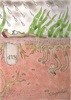 Aw - worm funeral