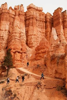 hike at Bryce Canyon National Park, Utah Oh The Places You'll Go, Places To Travel, Places To Visit, Bryce Canyon, Zion National Park, National Parks, Parcs, Adventure Is Out There, Vacation Spots
