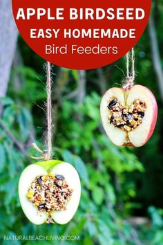 How to Make Apple Birdseed Homemade Bird Feeders Everyone Loves - Natural Beach Living Apple Activities, Winter Activities For Kids, Nature Activities, Creative Activities, Autumn Crafts, Fall Crafts For Kids, Projects For Kids, Homemade Bird Feeders, Diy Bird Feeder