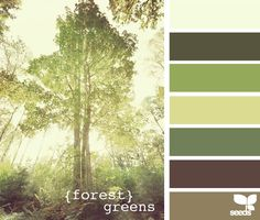Forest Greens Palette