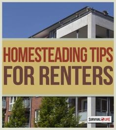 Homesteading For Renters: Can It Be Done? | Frugal Lifestyle & Prepping Tips From The Expert By Survival Life http://survivallife.com/2015/03/03/homesteading-for-renters/#