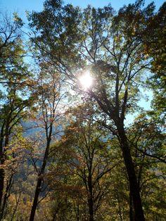 November day Smokey Mountains Tennessee