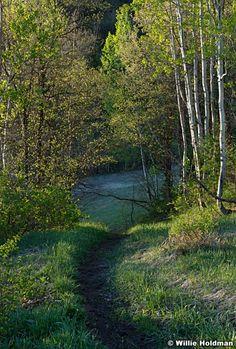 Spring - perfect hiking season at Sundance