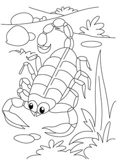 Three Gila Monsters coloring page JungleDesert Habitat Ideas