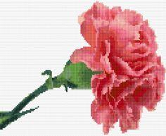 Cross Stitch Embroidery Embroidery Kit 2664 - Free cross-stitch design 'Pink Carnation', 128 x 105 stitches 27 colors Cross Stitch Calculator, Cross Stitch Kits, Cross Stitch Charts, Cross Stitch Designs, Cross Stitch Patterns, Cross Stitch Embroidery, Embroidery Patterns, Hand Embroidery, Pink Carnations