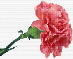 Embroidery Kit 2664