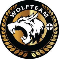 Wolfteam Neden Açılmıyor Hata Veriyor Çözümü Nedir