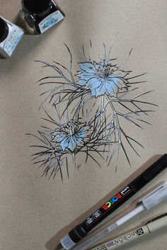 "Day 24: Damas entre verde (Arañuela) ""Nigella damascena""  #InkTober #InkTober2016 #InkToberEspaña #FloraDaGaliza Inktober, Nigella, Watercolor Tattoo, Tattoos, Drawings, Flower, Green, Dibujo, Blue Prints"