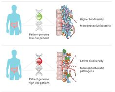 People's genes may influence 'gut' bacteria that cause Crohn's disease, ulcerative colitis -- ScienceDaily