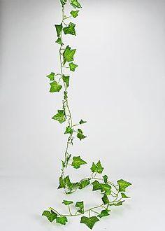 Growing Bamboo - Διακοσμητική γιρλάντα Κισσός 200cm (LUK22096) Herbs, Plants, Herb, Plant, Planets, Medicinal Plants