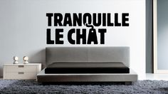 Tranquille le chat