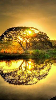Aftenoon sun , Langkawi Island