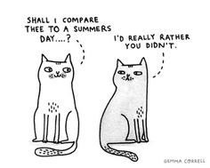 Shakespearean kitty.