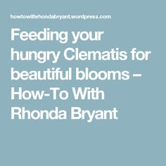 Feeding your hungry Clematis for beautiful blooms – How-To With Rhonda Bryant