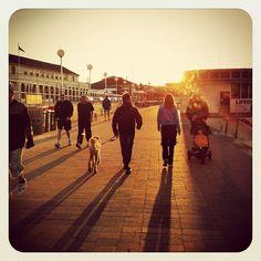 Bondi Promenade Sunrise Strolls #atbondi #bondi #promenade #Sydney