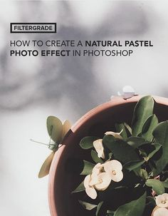 50 excellent photography Photoshop Tutorials that deal with post-production techniques and effects, color correction, enhancement and photo retouching.