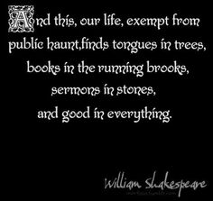 ~ William Shakespeare As You Like It Act II, scene i, lines 1-17