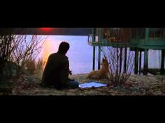 The Lake House....Eva Cassidy singing Time after Time. A beautiful song and a beautiful film.