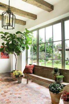 Fiddle leaf fig interior. Fiddle leaf fig interior ideas. Fiddle leaf fig interiors #Fiddleleaffig #interiors Chris Barrett Design