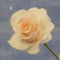 rose tutorial.. Probably one of the easiest to follow