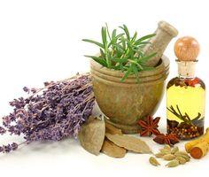 Jak správně sbírat, sušit a skladovat bylinky? Poradíme