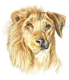 LIONHOUND ...... the one and only Rhodesian Ridgeback Icon on Etsy, $265.00