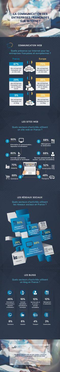 Quelle utilisation du site web, du blog professionnel et des réseaux sociaux par les entreprises françaises ?