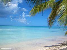 Saona Island Excursion Gran Bahia Principe Punta Cana Resort Punta Cana, Dominican Republic