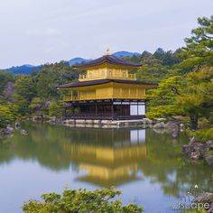Kinkaku-ji - The Golden Pavilion!  Arguably one of the classic Japan photos to get  and one of the hardest due to the large throngs of tourists  and the strict no tripod policy!  I was more worried about the other tourists rather than a trophy shot  though - the sheer multitude meant i might not even be able to get a good viewpoint to see the pavilion! by ctscape.au