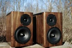 The Florians: Precision designed reference monitors featuring a high excursion midbass driver and a large faceplate tweeter capable of producing amazingly linear frequency response from 20khz on down to 50hz with musical reproduction down to 40hz.