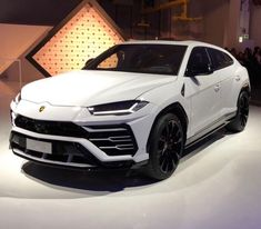 Lamborghini Urus painted in Bianco Monocerus Lamborghini Veneno, Ferrari F80, Lamborghini Diablo, Lamborghini Logo, Lamborghini Interior, Luxury Sports Cars, Small Luxury Cars, New Sports Cars, Super Sport Cars
