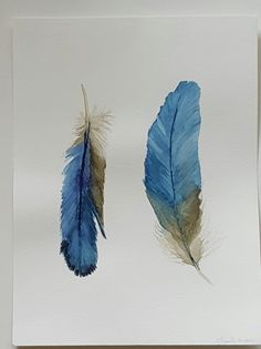 Pintura acuarela de pluma azul