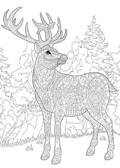 Stock vector of 'Stylized deer (stag, buck, christmas reindeer) among woodland landscape. Freehand sketch for adult anti stress coloring book page with doodle and zentangle elements.'