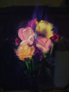 Mat Collishaw, Burning Flowers IV, Burning Flowers IV, framed photograph, 58 x 48, 2003