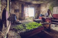 neilforshawphotography:    Looks so weird when abandoned buildings start getting taken over by nature again. They even left the TV there to be consumed.  deviantart:    Green Mattressby ~Dapicture
