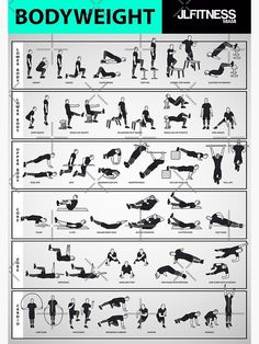 Weight Training Workouts, Body Weight Training, Gym Workout Tips, Ab Workout At Home, Workout Videos, At Home Workouts, Calisthenics Workout Plan, Body Weight Exercises, Workout Plans