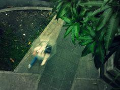 Raining by marusweet, via Flickr Explore, Photography, Photograph, Fotografie, Photoshoot, Fotografia, Exploring