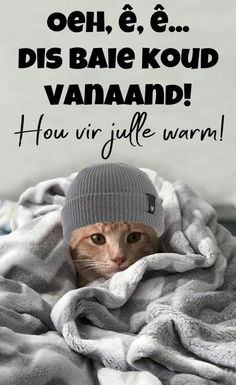 Good Night Greetings, Good Night Wishes, Good Night Quotes, Cold Weather Quotes, Lekker Dag, Good Night Blessings, Goeie Nag, Goeie More, Afrikaans