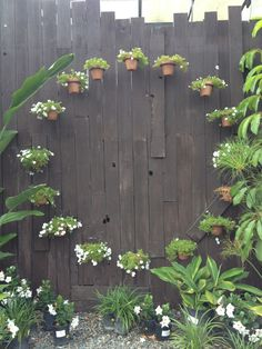 Circle of clay pots mounted on a tall dark gray fence. Awesome visual element