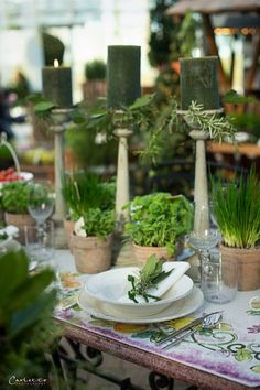 See related links to what you are looking for. Kraut, Herbalism, Table Decorations, Interview, Home Decor, Blog, Green, Party Garden, Summer Decorating