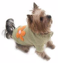 Our new range of dog jumpers for 2016 include this stylish crochet dog jumper in red. We have dog jumpers for all sized dogs. These jumpers are suitable for Medium to Large dogs. Baby Dog Costume, Dog Costumes, Cute Jumpers, Dog Jumpers, Dog Boutique, Puppy Clothes, Dog Sweaters, Little Pets, Baby Dogs