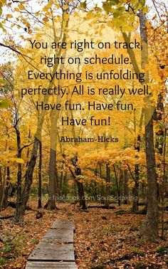 *You are right on track right on schedule. Everything is unfolding perfectly. All is really well. Have fun, have fun, have fun.