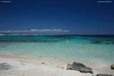 No te apetece nadar- Mediterranea Pitiusa la Naviera de Formentera